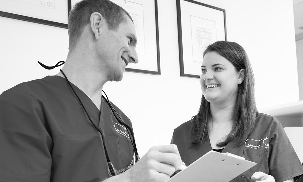 Job gesucht? Hier finden Sie freie Stellen in der Zahnarztpraxis Dr. Dr. Wiesner in Innsbruck.